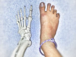 Musculoskeletal Podiatry